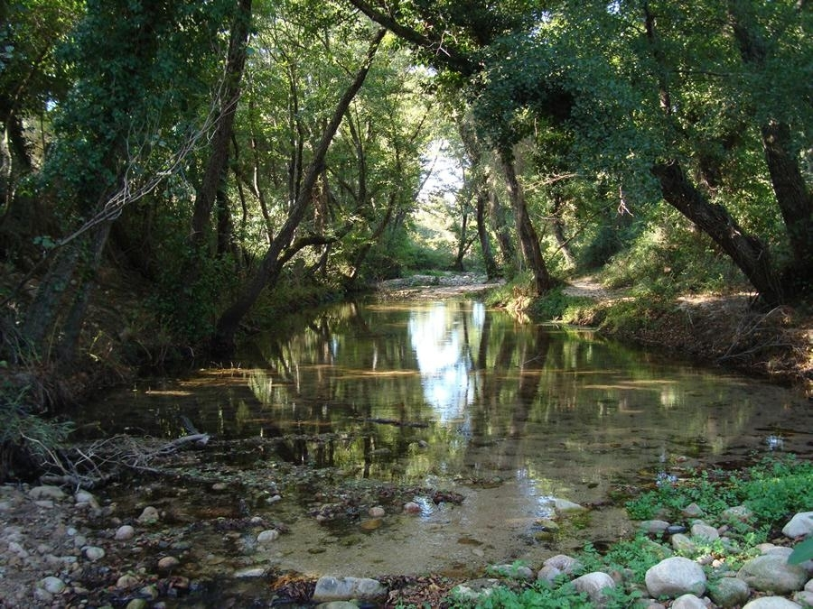 Ambiente del monte nieddu sardegna pleinair campeggi e for Camping budoni