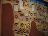 Museo Archeologico - Antiquarium