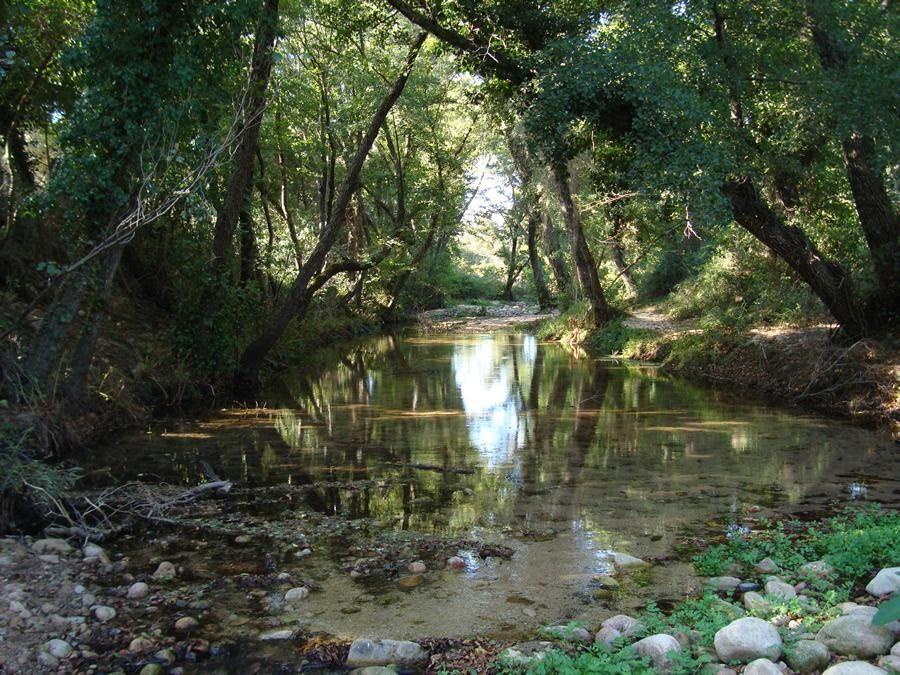 ambiente del Monte Nieddu