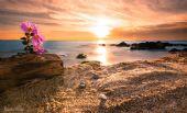 Spiaggia di Lu Bagnu